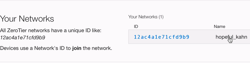 Image showing ZeroTier Network ID and name