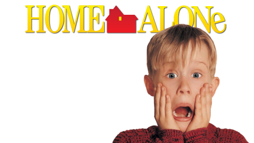 "home alone picture - understand ""is anybody home"""