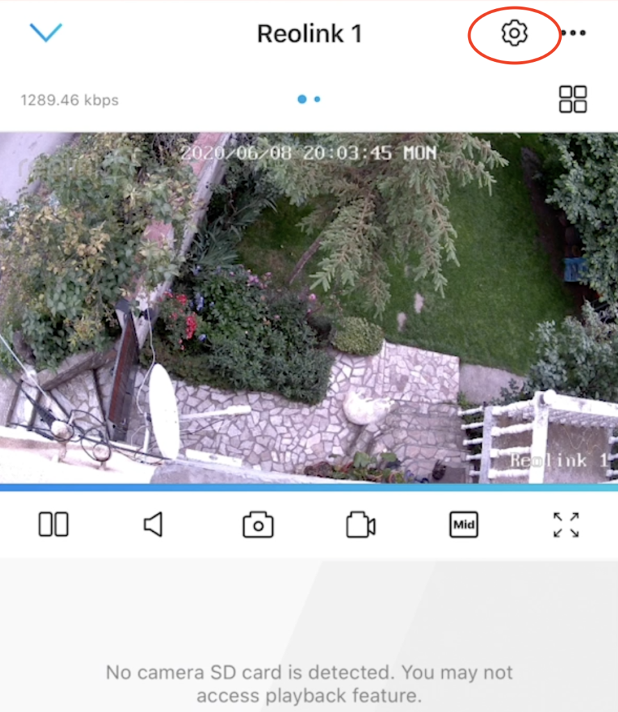 Reolink app camera stream showing my yard and my sleeping dog. The point here is to click on the gear wheel button to go to the user management.
