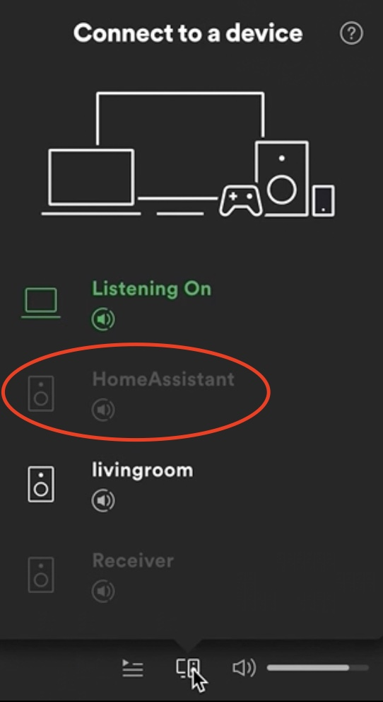 This is from where you can stream music after your Spotify Connect add-on is up and running.