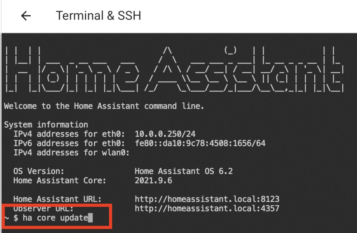 Update with command ha core update using the Home Assistant CLI (Terminal & SSH add-on)